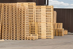 CSS New Pallets